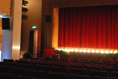 Il teatro Vida va in streaming