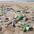 Puglia: ora c'è di nuovo il divieto di usare oggetti di plastica in spiaggia
