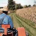 Svolta epocale la legge per agricoltura sociale