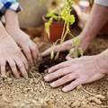Clima: in Puglia aumenta rischio desertificazione