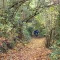 58enne smarrito per otto ore nel bosco