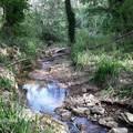 Progetto recupero acque reflue: Calderoni risponde ad Articolo 1