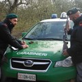 Caccia illegale nel Parco dell'Alta Murgia