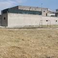 Operazione campetto via Alfieri pulito