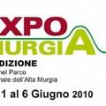ExpoMurgia 2010