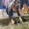 Nel giardino della scuola un'aiuola per le api