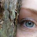 A Gravina fa tappa il camper per la prevenzione della cecità