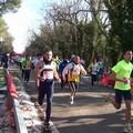 Il 21 gennaio tutti in Bosco per il Giro del Falco