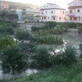 Gravina conta i danni: la pioggia è entrata anche nelle abitazioni
