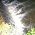 Potenziale pericolo di inquinamento del torrente Gravina?