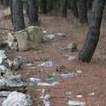 Il parco dell'alta Murgia deturpato