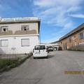 Furto al canile sanitario: oltre 30.000 euro di danni