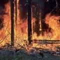 Una riunione operativa per trovare soluzione agli incendi