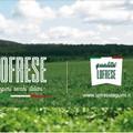 """""""Leguminose da granella per un futuro sostenibile"""": un convegno sull' agricoltura sostenibile"""