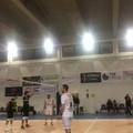 Esordio con vittoria per la Casareale Volley