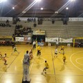 Volley, una Magis da record