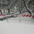 Emergenza neve, interventi di soccorso anche dei carabinieri