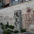 """""""Ripuliamo la nostra città"""": la prima iniziativa di Orgoglio Gravinese"""