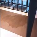 Piove nell'Ospedale della Murgia