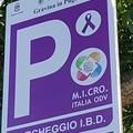 Inaugurato il primo parcheggio con strisce viola