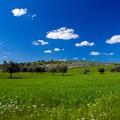 Trasformare la Puglia un grande Parco diffuso