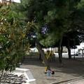 Che fine ha fatto il Parco Giochi di Via San Massimiliano Kolbe?