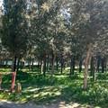 Il Comune candida a finanziamento il Parco di Grottasolagne