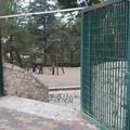 Parco della pineta chiuso. Anzi no