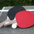 Il Tennis da Tavolo non coglie di sorpresa Gravina…
