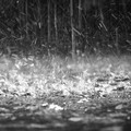 Allerta meteo per temporali fino a venerdì
