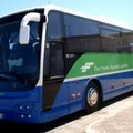 Bus navetta gratuiti per raggiungere Max Gazzè