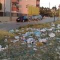Una città sporca e poco attenta all'igiene urbana