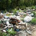 Sp 137 per Corato: un parco di rifiuti