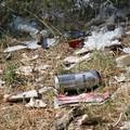 Bosco Difesa Grande: posizionata una campana per la raccolta della plastica