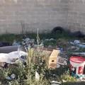 Abbandono dei rifiuti, nuova giornata di volontariato e pulizia