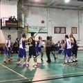 Royal Basket bella a metà: sconfitta all'esordio con la Fidens Giovinazzo