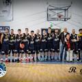 La Royal Basket vince e convince: battuta la Virtus Molfetta all'esordio casalingo