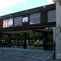 Rottweiler nella scuola dell'infanzia di via Guardialto