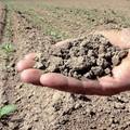 Agricoltura senza acqua