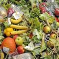 Stop agli sprechi alimentari