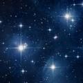 """""""Una pioggia di stelle in bosco"""""""
