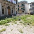 Palazzo della Caccia: cosa c'è dietro?