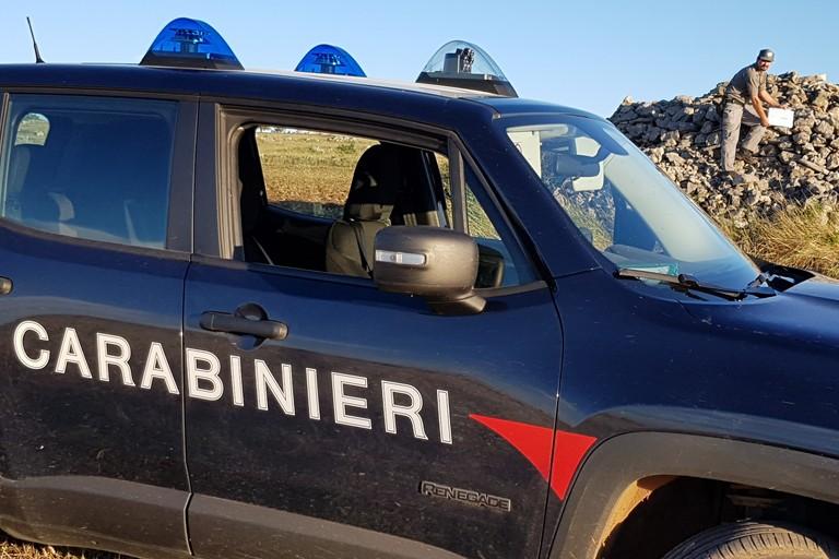 operazione carabinieri forestali parco
