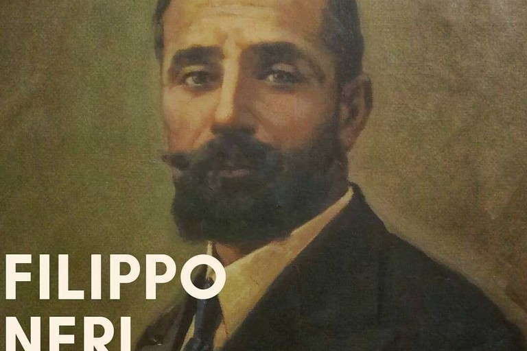 Filippo Neri, Medico igienista,Docente universitario