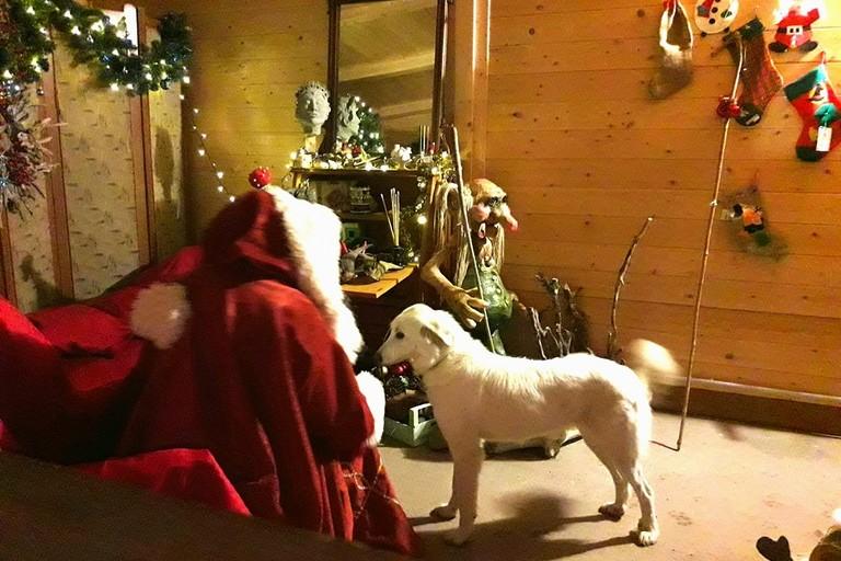 Babbo Natale ha trovato casa nel Bosco