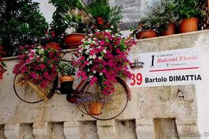 balconi fioriti icona settembre