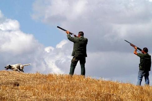 Referendum abolizione caccia, raccolta firme anche a Gravina