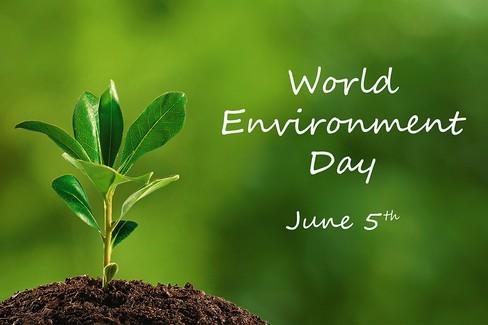 Gravina aderisce alla giornata mondiale dell'ambiente