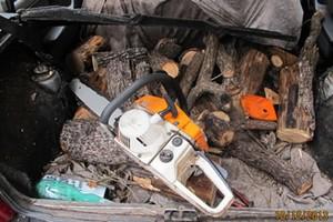 Ruba legna dal bosco, scoperto 62enne gravinese