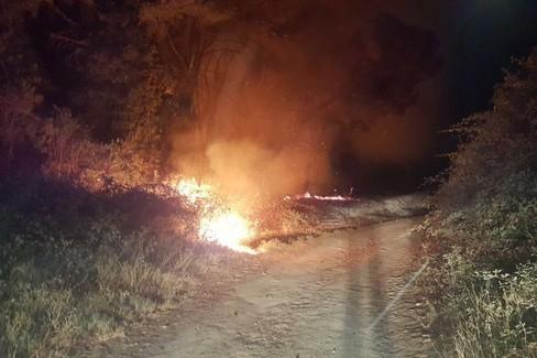 """Recupero acque reflue:  """"Rischio danni ambientali al Bosco """""""